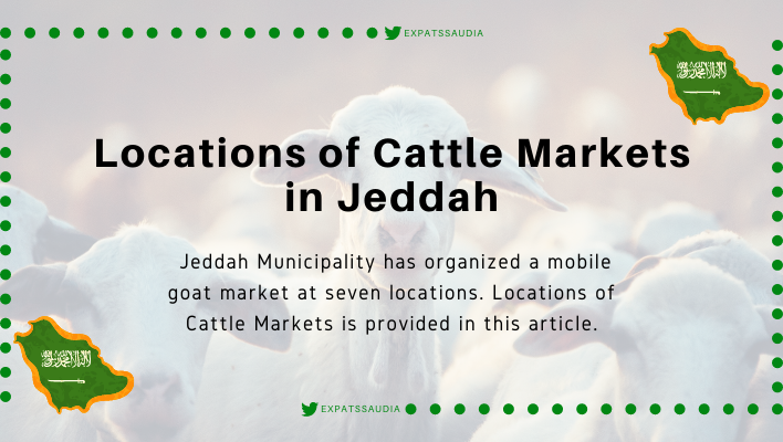 Locations of Cattle Markets in Jeddah